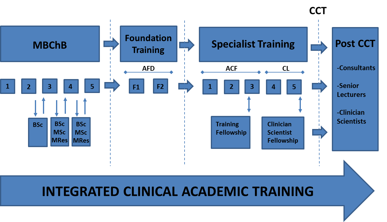 structure of the ICAT programme